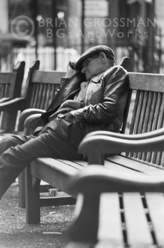 B&W Photograph - Afternoon Nap by Brian Grossman
