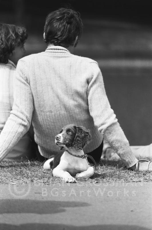 B&W Photograph- Man's Best Friend by Brian Grossman
